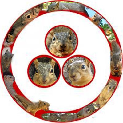 [Event Flier: South end of Pease Park - Dawn 'til Dusk - Sacred Ceremony at 7:31am, 1:31pm, 7:31pm - squirrelplanet.org]