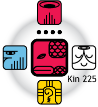 [Fifth Force Oracle graphic for Kin 225]